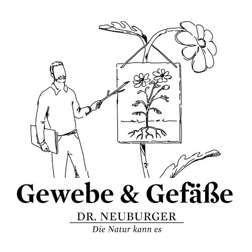 Online Vortrag: Gewebe & Gefäße