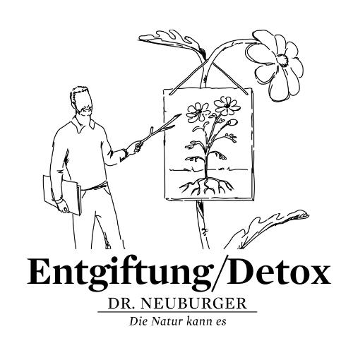 Online Vortrag: Entgiftung