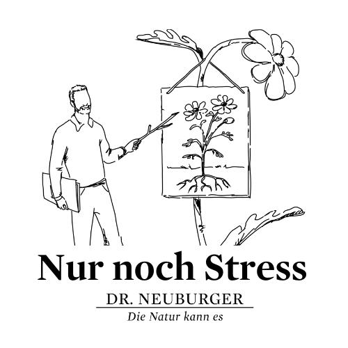Online Vortrag: Nur noch Stress